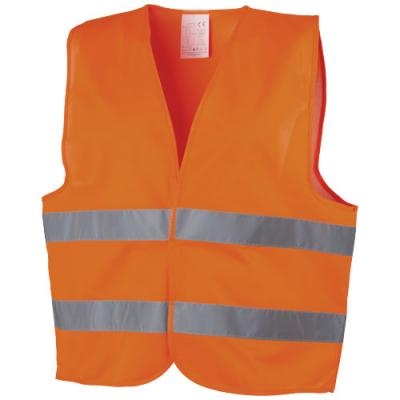 Image of Professional safety vest